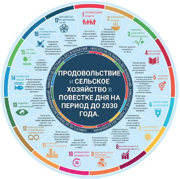 Диаграмма целей ООН